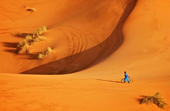 Велосипед в песках