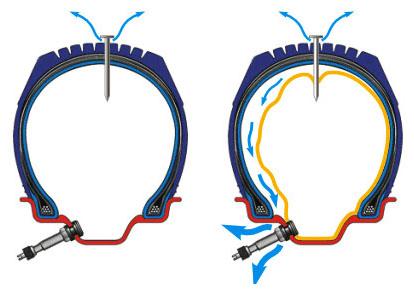 Камерные и бескамерные шины для велосипеда