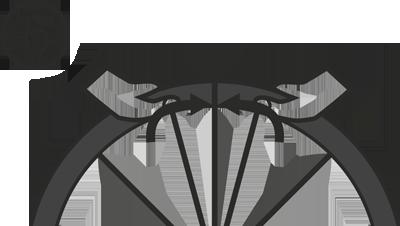 Устройство бескамерной шины