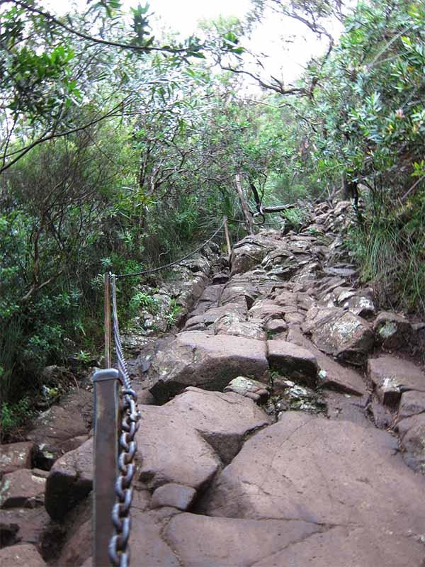 Дорога на гору