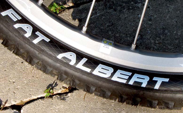 Покрышки горного велосипеда Schwalbe Fat Albert