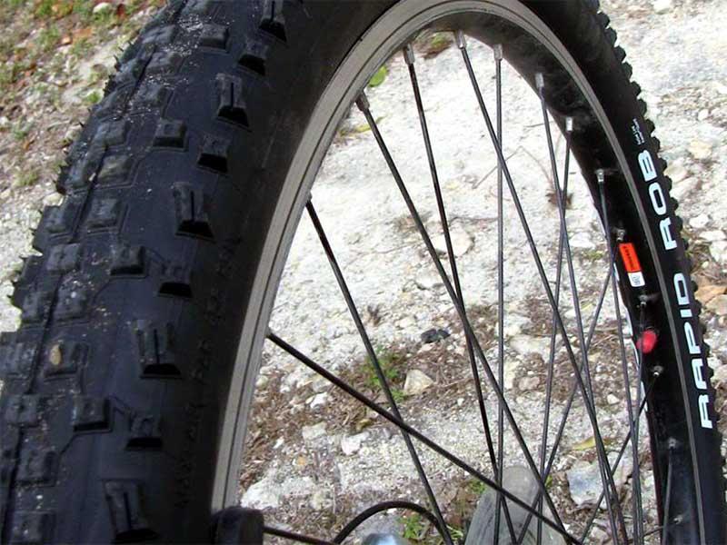 Покрышка Schwalbe Rapid Rob на горном велосипеде