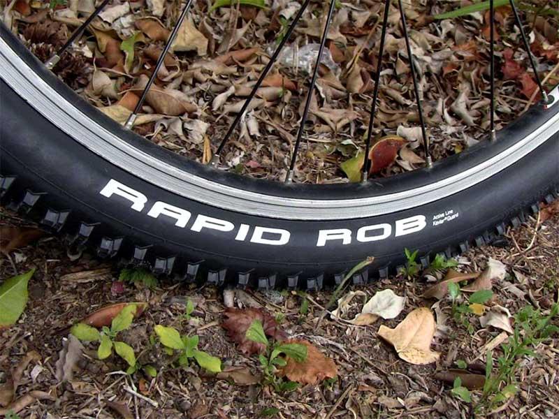 Покрышки для горного велосипеда Schwalbe Rapid Rob