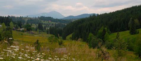 Карпаты возле села Яблоница