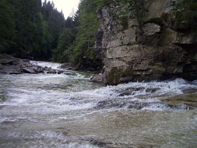 Река в Карпатах Прутец
