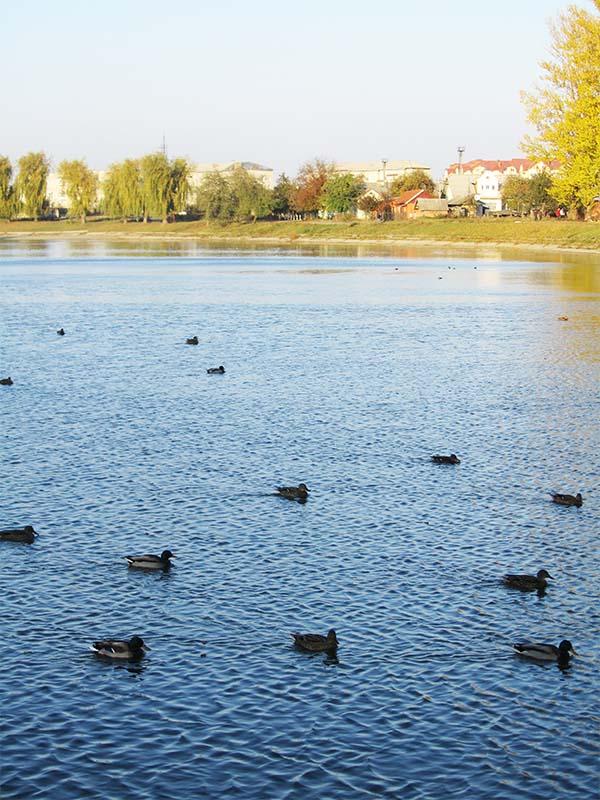 Озеро в Коломые