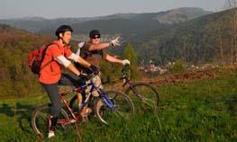 Велосипедисты в Карпатах