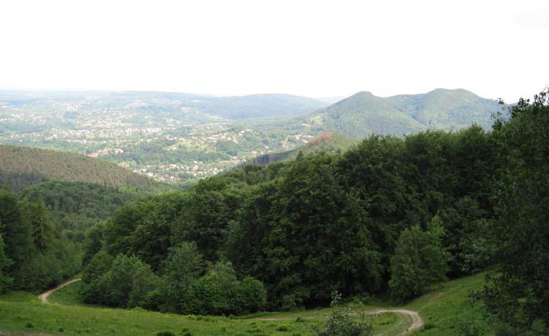 Гора Михалкова в Украинских Карпатах
