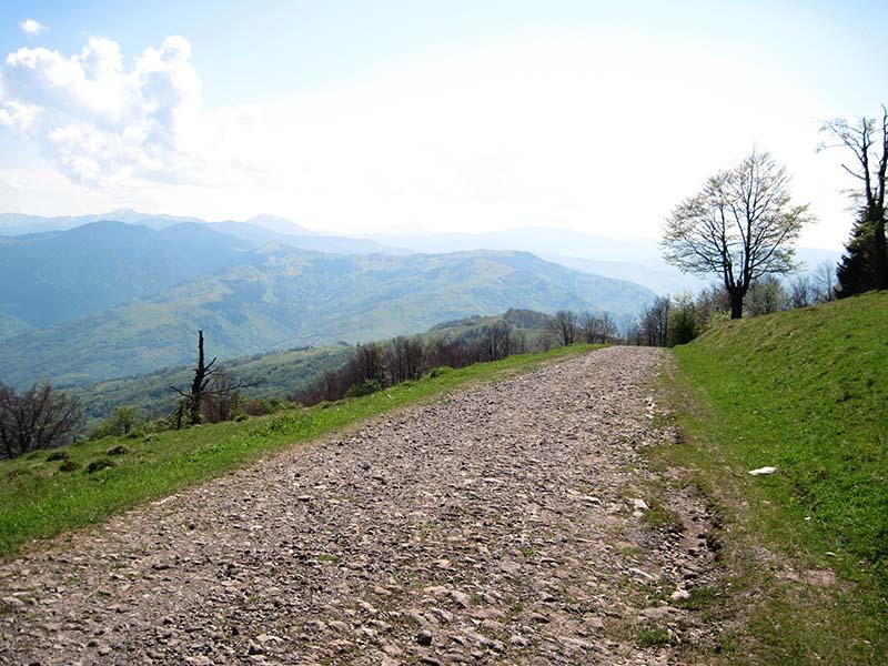 Каменная дорога в Карпатах